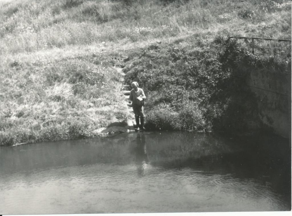 Békéscsaba, 1986, Malakológus találkozó