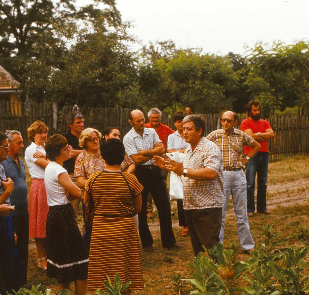 baja-1982-3